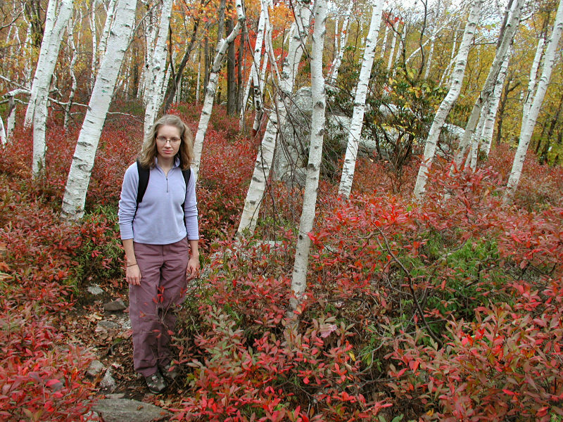 Zhanna among the birches and blueberries.
