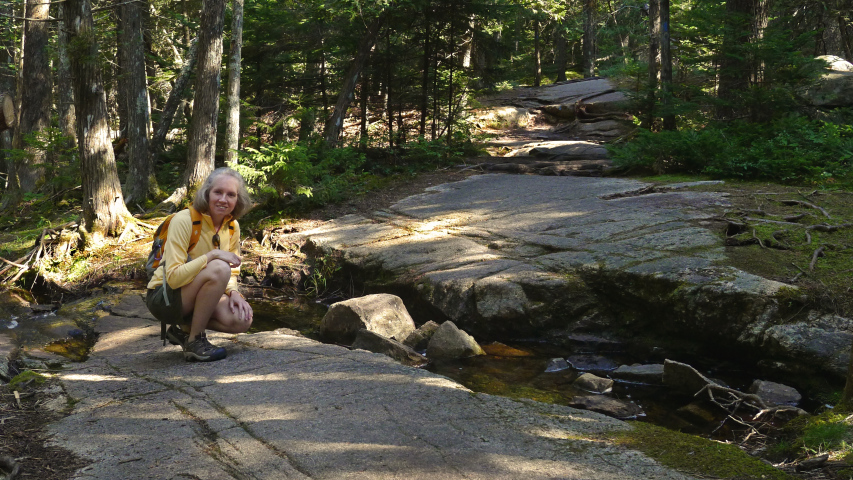 A stream crossing the Acadia Mountain Trail