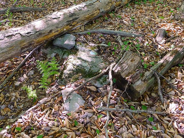 Eyelevel view of 36 JPN on the embedded boulder.