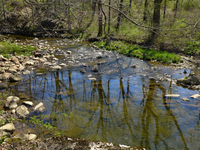 A peaceful scene along Bushkill Creek