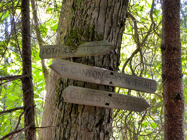 Old trail signs at the intersection of Potholes, Eagles Crag and Dorr Mountain South Ridge Extension