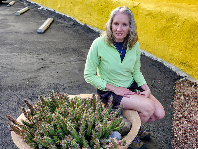 We found this pot full of Echinocereus next to the restaurant!