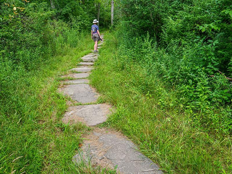 Nice stonework on the Turkey Hill Trail